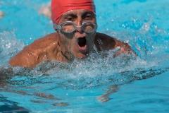 0071Life-Long-swimming